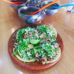 Deliciosos Tacos