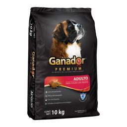 Alimento Para Perro Ganador Premium Adulto Raza Grande 10 Kg