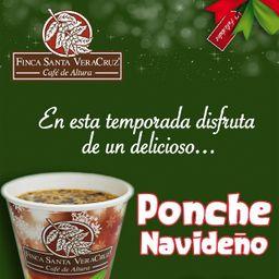 Ponche Navideño 12 oz