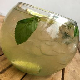 Pecera Moscow Mule