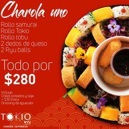 Charola 1
