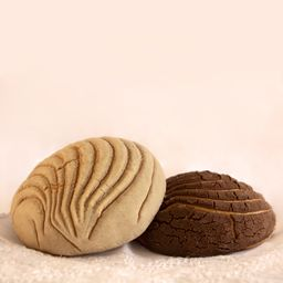Concha Chocolate