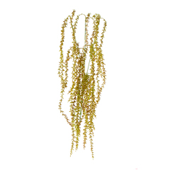 Planta Con Follaje Grande Fina x3 60cm 1pz - Verde/Rojo - Art. 6