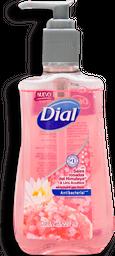 Jabón Dial Para Manos Sales Rosadas y Lirio 221 mL
