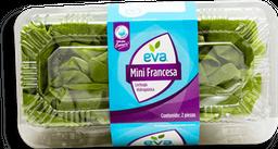 Lechuga  Eva Mini Francesa Hidropónica 2 x 1