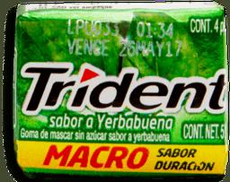 Trident Yerbabuena