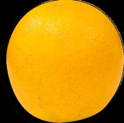 Naranja Valencia