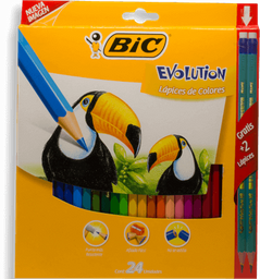 Lápices de Colores Bic Evolution 24 U