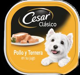 Alimento Para Perro Cesar Clásico Pollo y Ternera 100 g