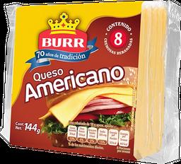 Queso amarillo tipo americano Burr 8 reb 144 g