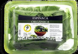 Espinaca Campo Vivo Orgánica 180 g