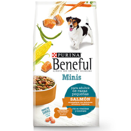 Alimento Para Perro Purina Beneful Minis Salmón 2 Kg