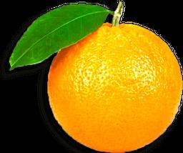 Naranja de Jugo