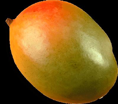 Mango Paraiso