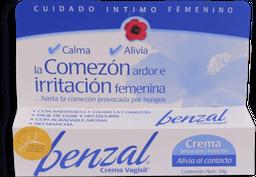 Benzal Vagisil Crema 30 g