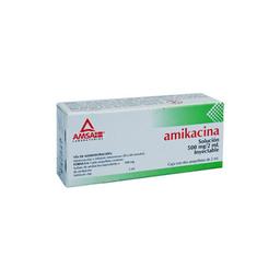 Amikacina 500mg/2 Ml Iny 2amp Gi