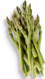 Verduras Esparrago Pieza 750 mL