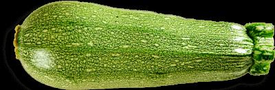 Calabaza Italiana