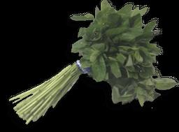 Hierbabuena Rollo