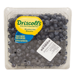 Blueberries 510 g