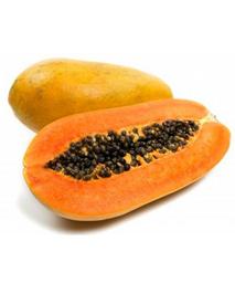Papaya Baby Maradol