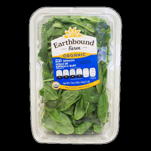 Espinaca Nutribits Organica 454 g