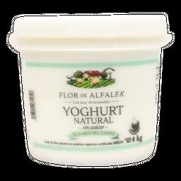 Yoghurt Natural Con Fruta 4 Kg Flor De Alfalfa