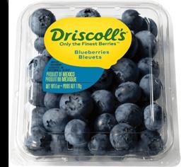 Mora Azul Driscoll's 170 g