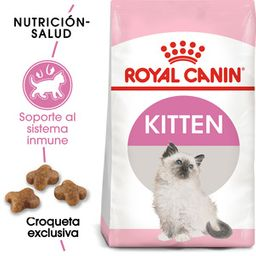 Royal Canin Alimento Seco Kitten