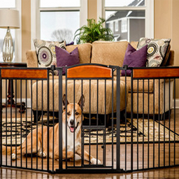 Carlson Pet Products Puerta para Estudio Decorada