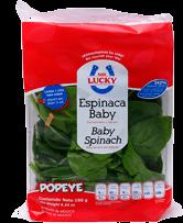 Espinaca Mr. Lucky Baby 180 g