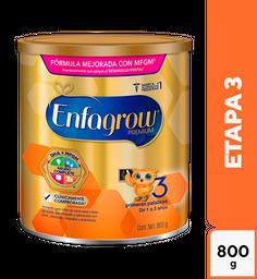Fórmula Para Lactantes Enfagrow Premium Etapa 3 800G