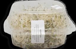 Germinado de Alfalfa La Cocina Verde Pz