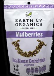 Moras Blancas Deshidratadas Earth co Organics 226 g