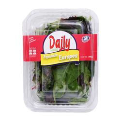 Ensalada Daily Salad