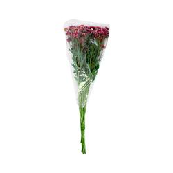 Ramo Flor 1 U