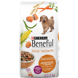 Alimento Para Perro Beneful Adulto Salud Radiante 2 Kg