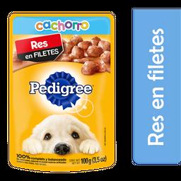 Alimento Para Perro Pedigree Cachorro Res 100 g