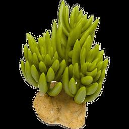 Petco Arbusto Decorativo 8.8 Cm Ancho X 8.8 Cm Alto