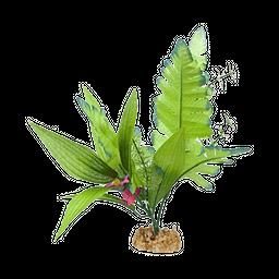 Petco Planta Verde Frondosa 5 cm an X 15 cm al