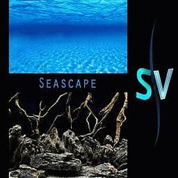Seaview Inc. Respaldo Mar Mistico 45 cm al