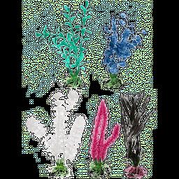 Petco Planta Aperlada 5 cm an X 17 cm al