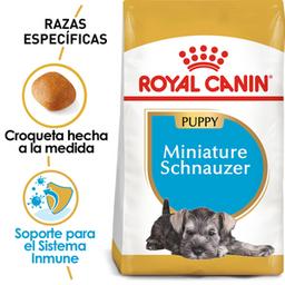 Croquetas Miniature Schnauzer Puppy Royal Canin Pos