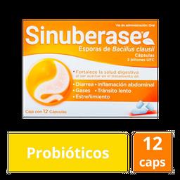 Sinuberase 12Caps 2B