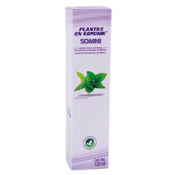 Esencias Naturales Spray 120Ml