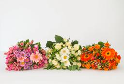 Ramo de Flores Selecto 36 U