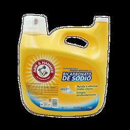 Arm & Hammer Detergente Bicarbonato De Sodio