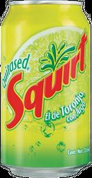Squirt 355 ml