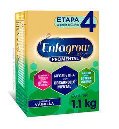 Fórmula Para Lactantes Enfagrow Premium Etapa 4 1100G