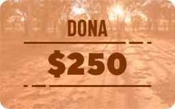 $ 250